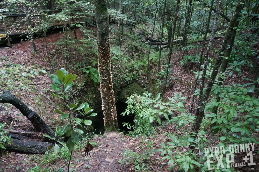 Falling Waters State Park: 1130 State Park Rd, Chipley, FL