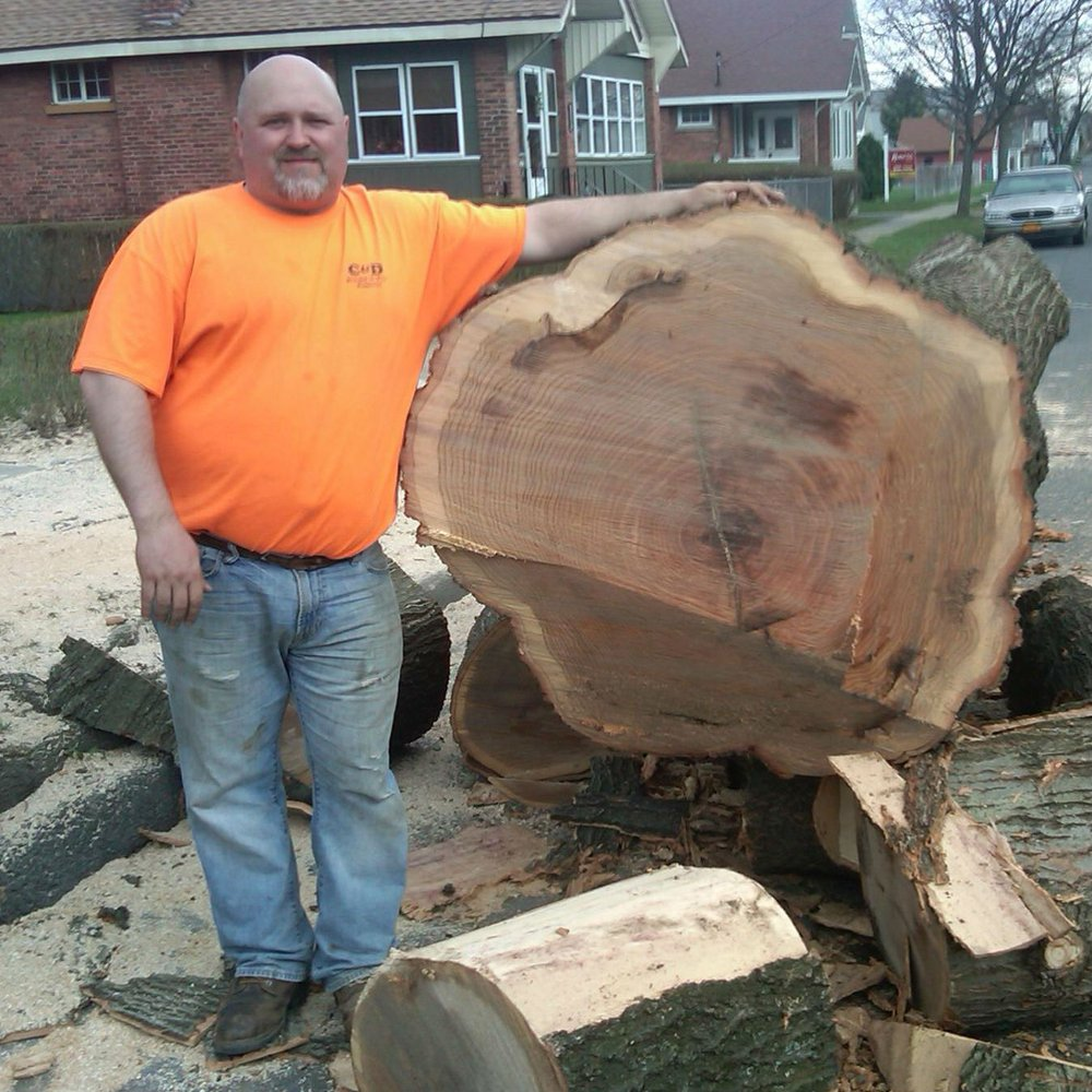 C&D Stump &Tree Removal: 3 Seventh Ave, Watervliet, NY