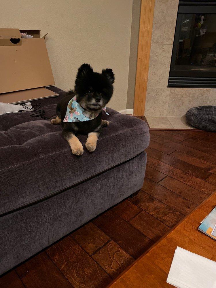 Cali Pet Goodz: 1230 1st St, Gilroy, CA