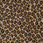 Kaoud Carpets And Rugs