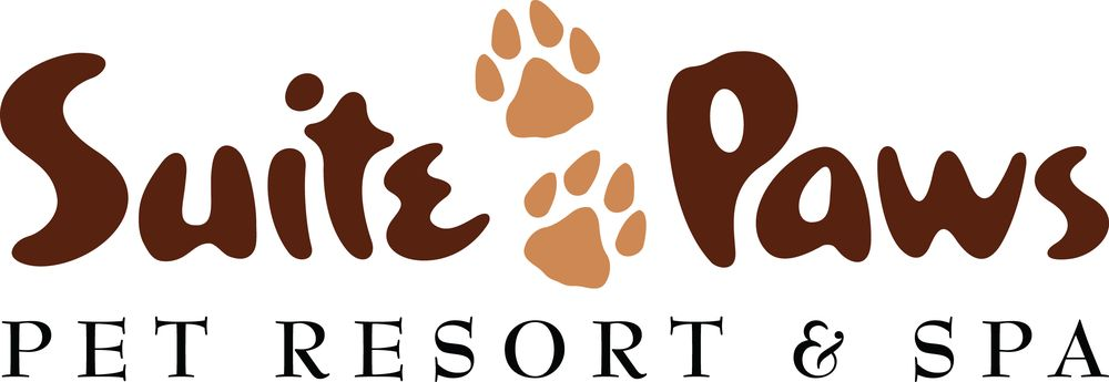 Suite Paws Pet Resort & Spa: 768 US-50, Milford, OH