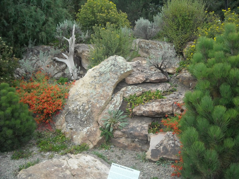 photo of betty ford alpine garden vail co united states. Cars Review. Best American Auto & Cars Review