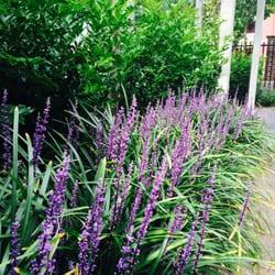 photo of garden of eve melbourne victoria australia - Garden Of Eve