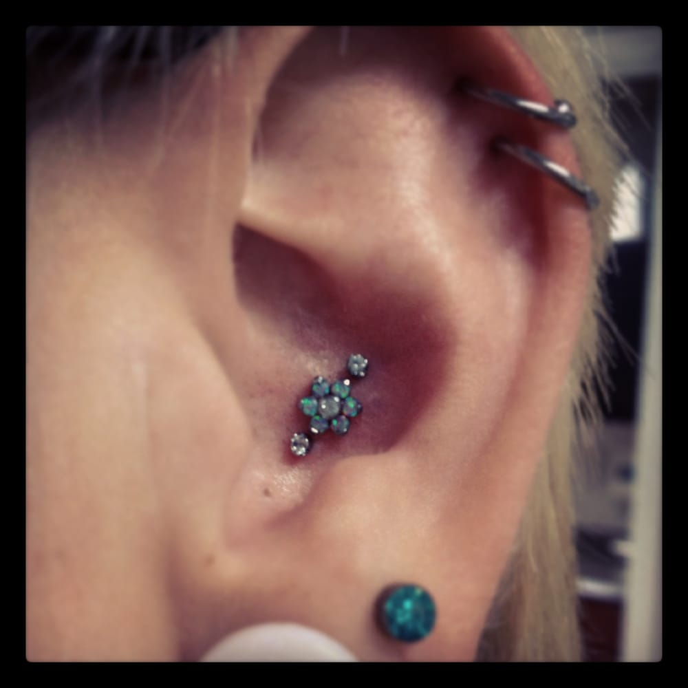 Photos for Anatomy Body Piercing - Yelp