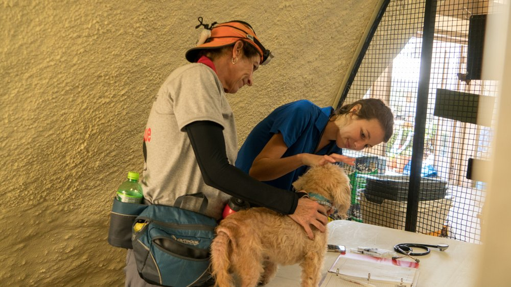 Florida State Animal Response Coalition: 235 Apollo Beach Blvd, Apollo Beach, FL