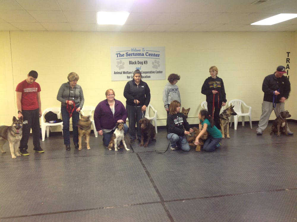 Black Dog K9 Training and Pet Services: 3815 W 127th St, Alsip, IL