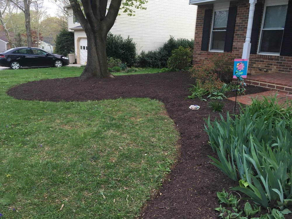 The Top Team Lawn Care: 3228 Powder Mill Rd, Hyattsville, MD