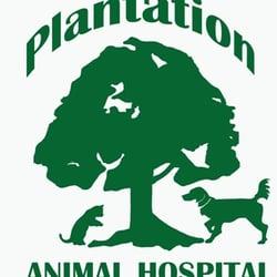 Plantation Animal Hospital - Veterinarians - 18 Plantation ...