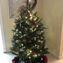 O Christmas Tree Miami Christmas Trees 10999 Biscayne Blvd