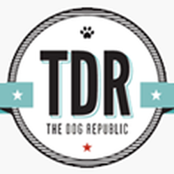 Dog republic closed 14 reviews pet groomers 86 keefer place photo of dog republic vancouver bc canada dog grooming and self solutioingenieria Image collections
