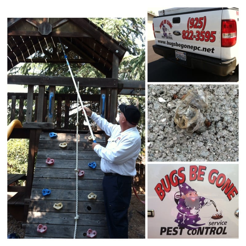 Bugs Be Gone Pest Control Service Last Updated June 2017