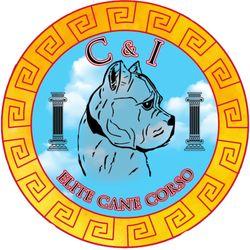 C&I Elite Cane Corso - Highland, IL - 2019 All You Need to