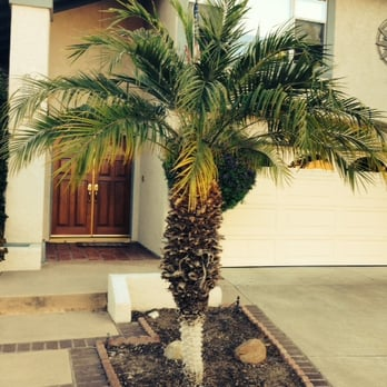 Photo Of Xeristyle Exterior Design   Fullerton, CA, United States. This Was  The