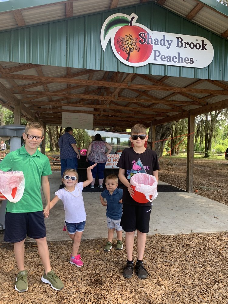 Shady Brook Peaches: 1988 Hwy 301 N, Sumterville, FL