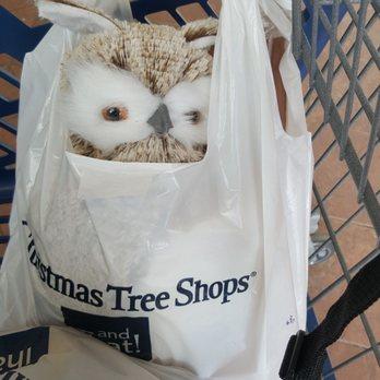 Photo of Christmas Tree Shops - Cherry Hill, NJ, United States. Oh hai - Christmas Tree Shops - 15 Photos & 31 Reviews - Christmas Trees