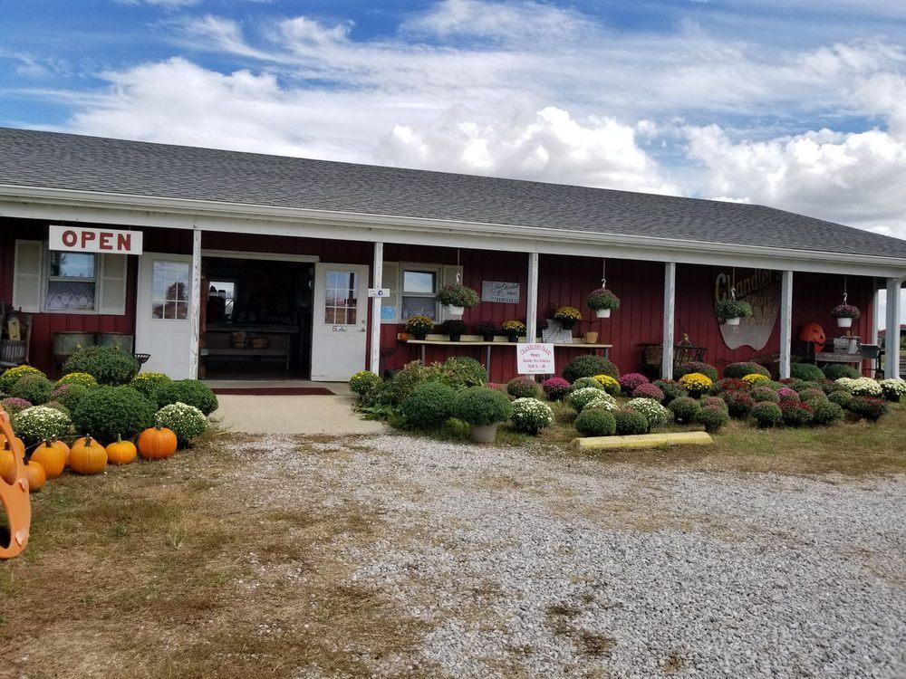 Chandler's Fruit & Vegetable Farm: 2849 S Co Rd 825 E, Fillmore, IN