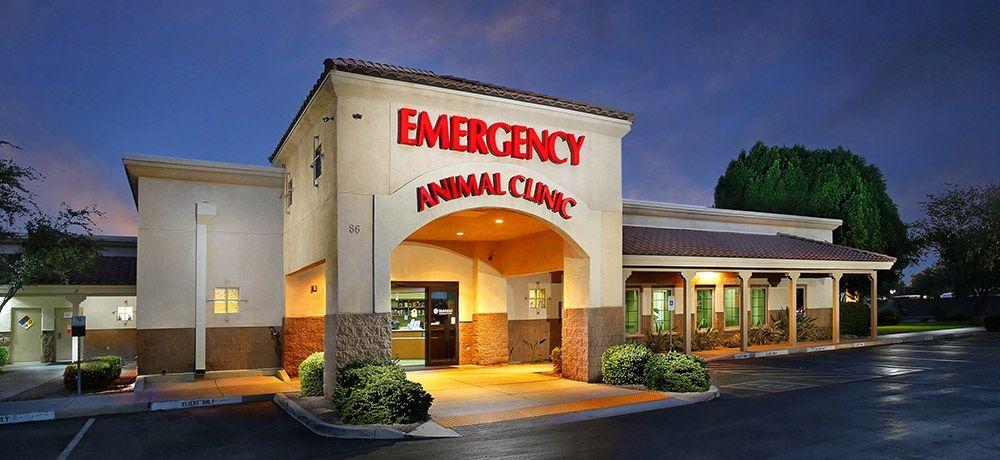 Arizona Veterinary Emergency & Critical Care Center: 86 W Juniper Ave, Gilbert, AZ