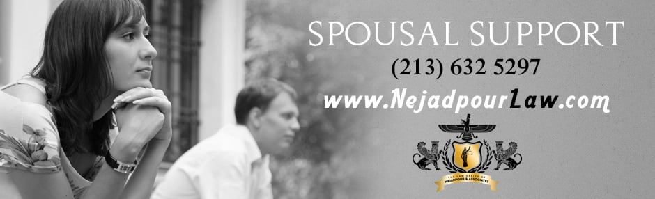 Nejadpour Law - (New) 10 Reviews - Divorce & Family Law