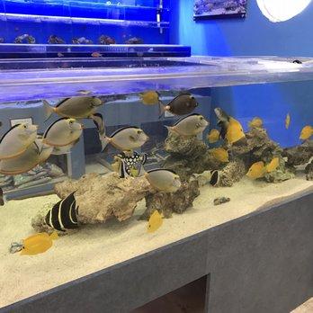Marine Warehouse Aquarium - (New) 17 Photos & 26 Reviews