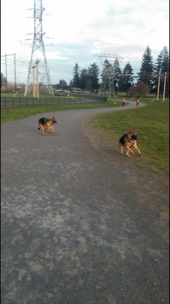 Off Leash Dog Park Vancouver Wa