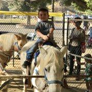 Video Eden Park ist Ponys — 14