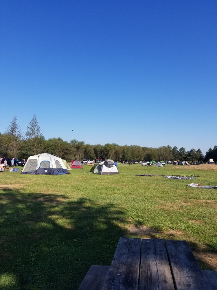 Olema Ranch Campground 13 Reviews Active Life Highway 1 Olema C