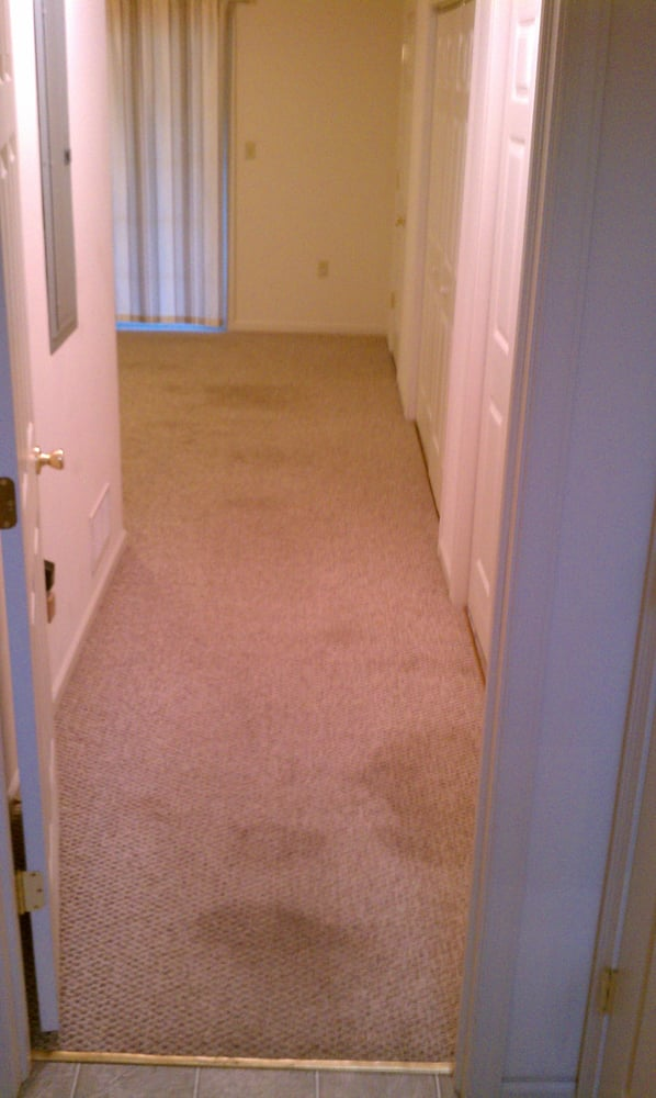 Healthy Homes Carpet & Upholstery Cleaning: 1211 Clearview Cir, Allentown, PA