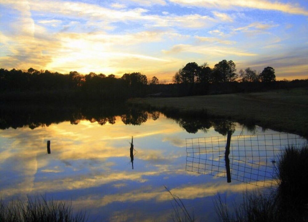 Nash Farm Battlefield: 100 Babbs Mill Rd, Hampton, GA