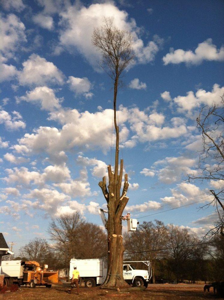 Athens Tree Service: 3371 Hwy 29 N, Belton, SC