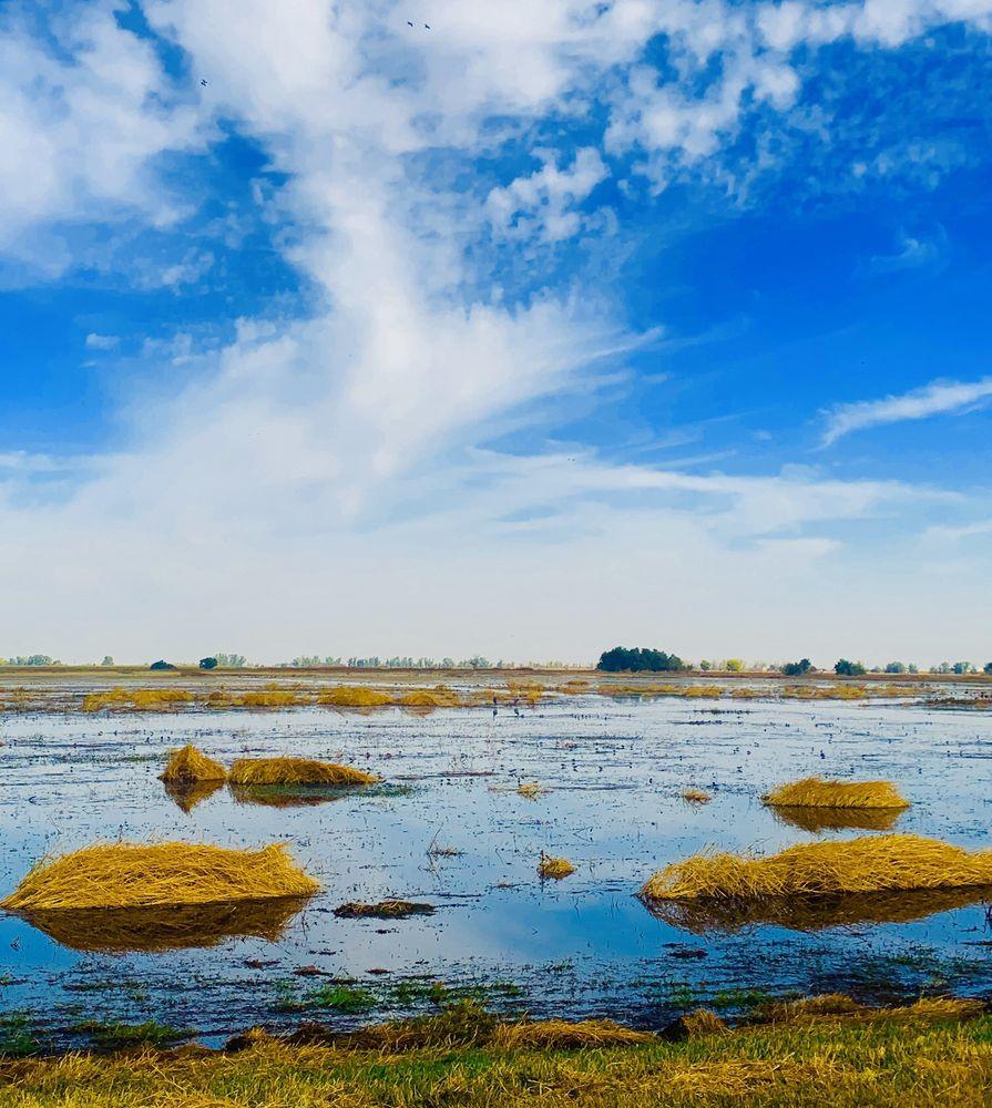 Merced National Wildlife Refuge: 7430 W Sandy Mush Rd, Merced, CA