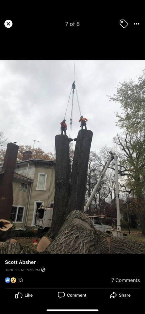 Absher Tree Service LLC: Wakeman, OH