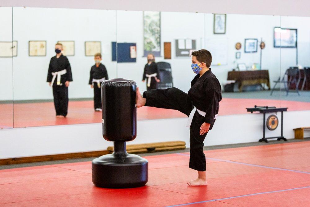 Crystal Dragon Family Martial Arts Center: 107 S Main St, Columbiana, OH