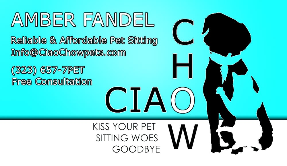 ciao chow pet sitting dog walkers hollywood hills west los