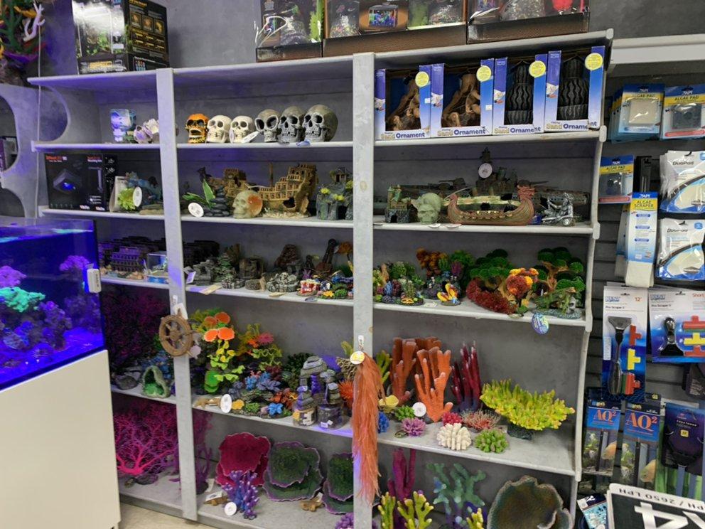 Fishy Business Aquariums & Supplies: 652 Bush River Rd, Columbia, SC