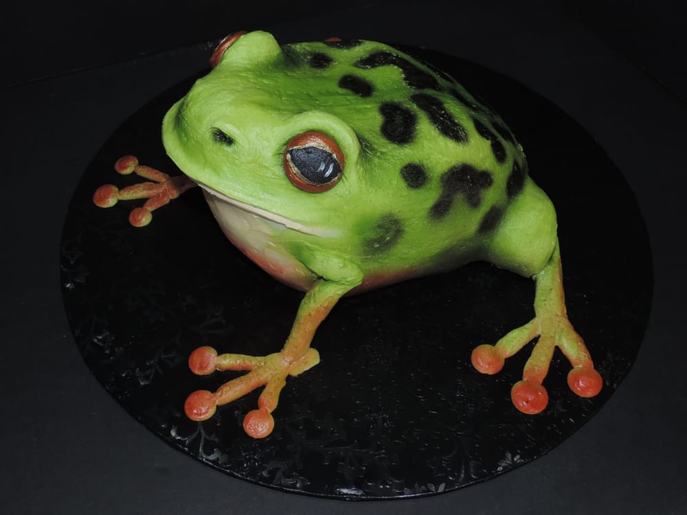Sublime Cake Design Redding Ca : Frog Cake - No Fondant! - Yelp