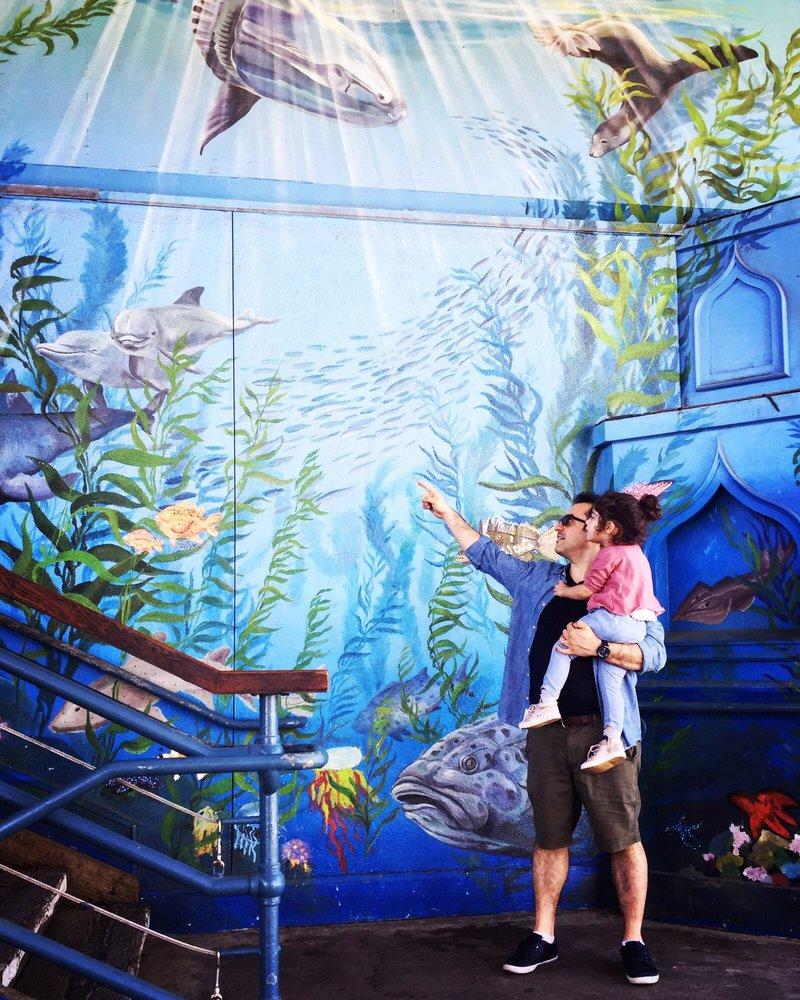 Santa Monica Pier Aquarium - 322 Photos & 133 Reviews ...