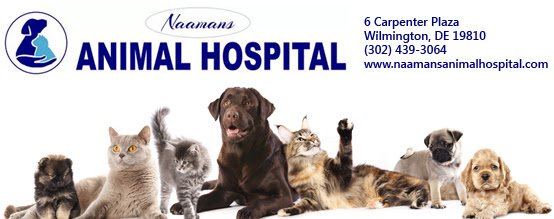 Naamans Animal Hospital: 6 Carpenter Plz, Wilmington, DE
