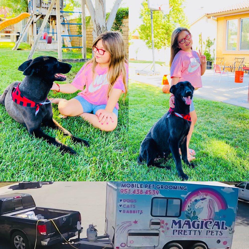 Magical Pretty Pets: San Jacinto, CA