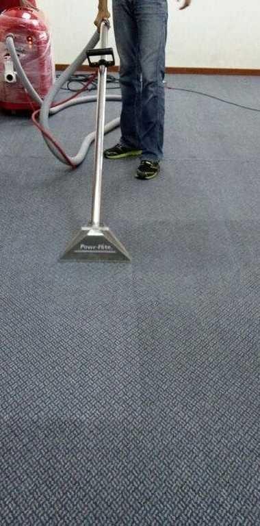 Capital Region Carpet Cleaning: 8 Palma Blvd, Albany, NY
