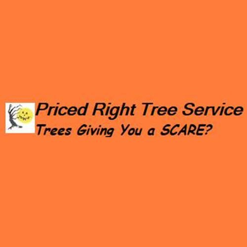 Priced Right Tree Service: 401 S 5th St, Deepwater, MO