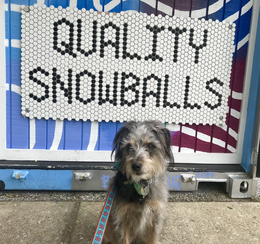 Quality Snowballs: 1014 W 36th St, Baltimore, MD