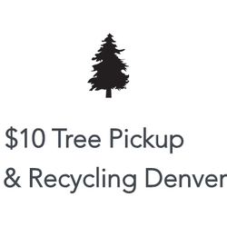 $10 Tree Pickup & Recycling - CLOSED - Tree Services - 200 W ...