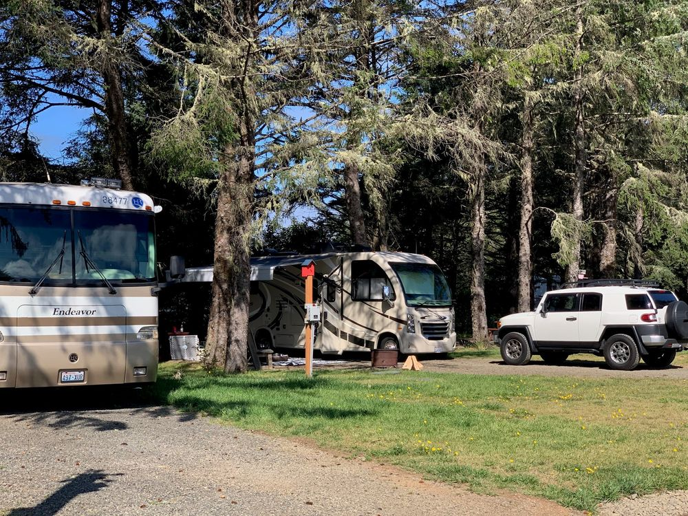 The Driftwood RV Resort & Campground: 3209 State Rte 109, Ocean Shores, WA