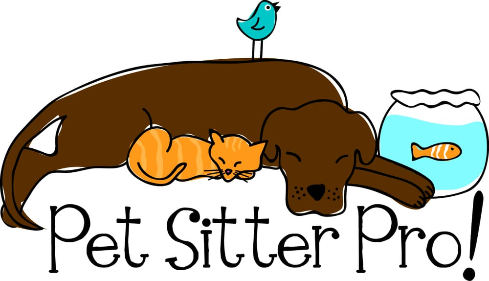 Pet Sitter Pro! - 2019 All You Need to Know BEFORE You Go