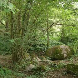 Image result for crevant in Indre parc de parelles