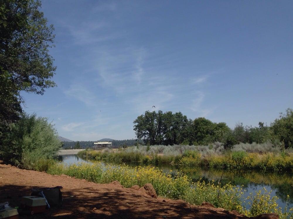 Cassel Campground: Cassel, CA
