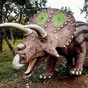 Museums In The Texas Hill Country