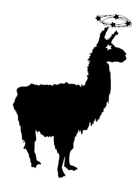 Dizzy Llamas Athletic Club: Boston, MA