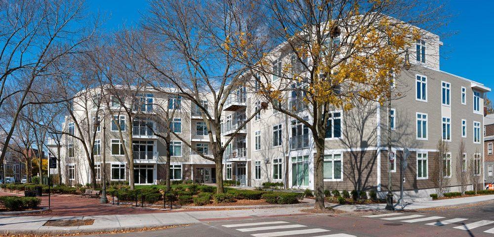 7 Cameron: 7 Cameron Ave, Cambridge, MA