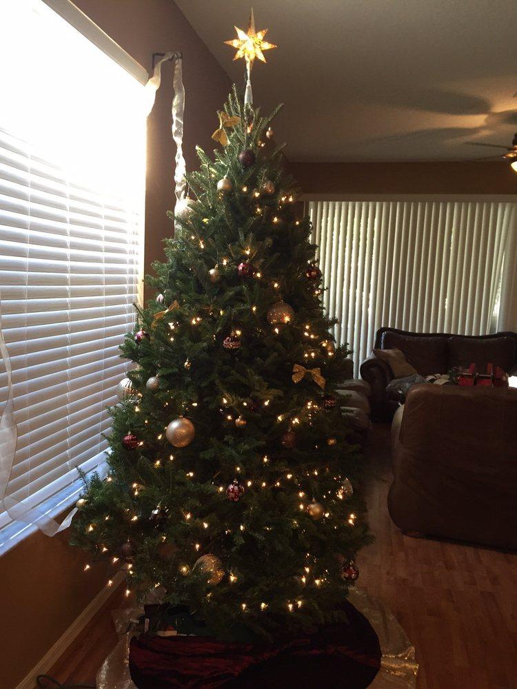 Lowe's Home Improvement: 7301 Park Blvd, Pinellas Park, FL